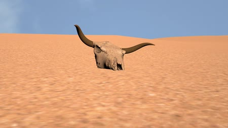 animais em extinção : Bull Skull in Desert Global Warming Poaching Concept 3D Animation 6 Stock Footage