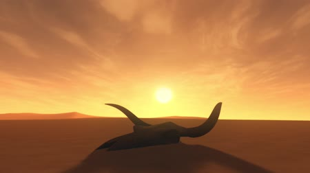buvol : Bull Skull in Desert Global Warming Poaching Concept 3D Animation