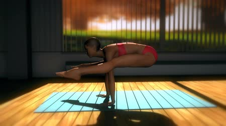 yin and yang : Firefly Yoga Pose in Yoga studio 3D Animation 2