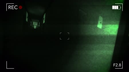 viewfinder : Fancy Hotel Corridor Yurei Ghost Apparition Handheld Camera 3D Animation