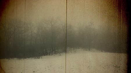 uğursuz : 4K Pan in a Foggy Forest Scary Winter Scene Vintage