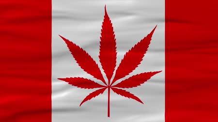 лозунг : Canadis Flag Concept for Marijuana Legalization in Canada