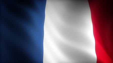 blue flag : Flag of France (seamless) Stock Footage