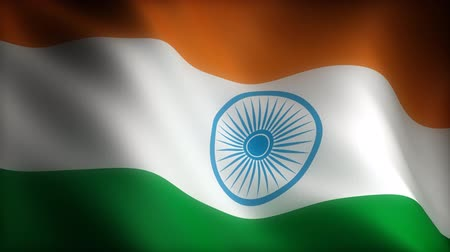 indiani : Flag of India (seamless) Filmati Stock