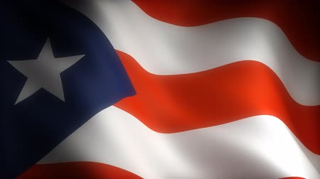 blue flag : Flag of Puerto Rico (seamless)
