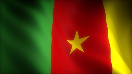 birlik : Flag of Cameroon (seamless)