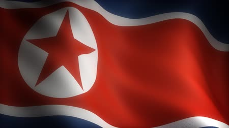north korean flag : Flag of North Korea (seamless) Stock Footage