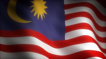 blue flag : Flag of Malaysia (seamless) Stock Footage