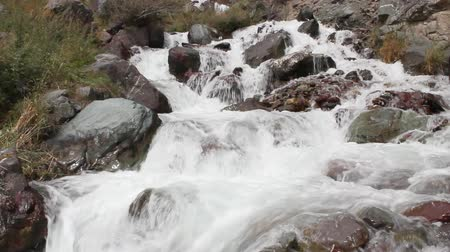 поток : Water flows over a rock in the river.