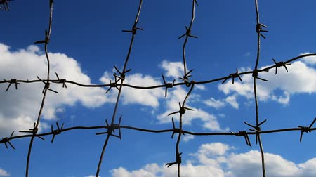 interdiction : Barbed wire on the blue sky background.