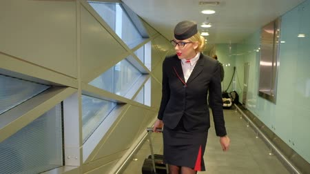 stewardes : At the airport flight attendant with suitcase goes and looks at his watch. High beautiful woman with glasses, dressed in dark uniforms with red trim, hurrying down the hallway, corrects makeup on the scarlet lips. Small luggage flight attendant carries wi