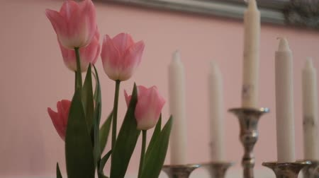 floweret : Pink tulips and white candles on table in living room. Beautiful flowers of cream shade stand in spacious premise with soft lighting. These blossoms are one of most popular and favorite plant in the world in cultures of some countries this plant has becom