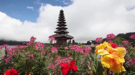 indonesia : Colorful flowers in front of the Balinese Temple Pura Ulu Danau Stock Footage
