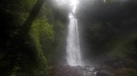 powerful : Large scenic waterfall in middle of Bali jungle Indonesia