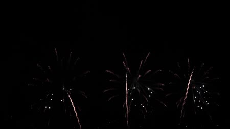 sylvester : fireworks at nightly sky Stock Footage