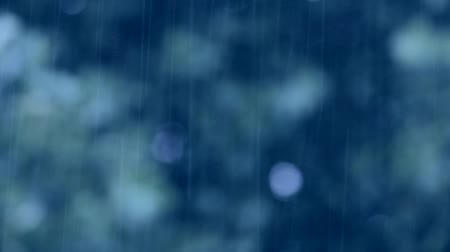 gotas : blue rain background