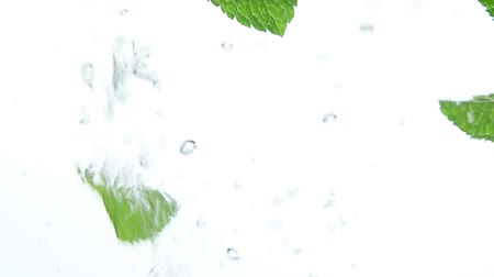 bule : Close up several fresh green mint leaves floating in clear transparent water with air bubbles, low angle side view, slow motion