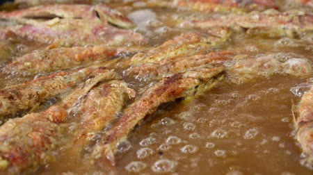 surmullet : Close up cooking deep fried red king mullet fish in hot sizzling oil in street food big pan, high angle view Stock Footage