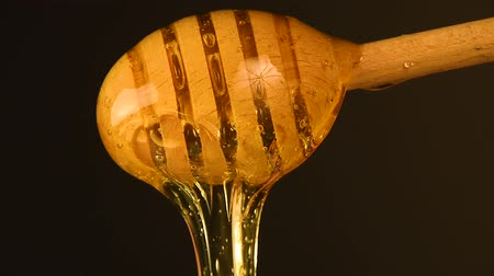 akacja : Close up fresh thick fluid acacia honey pouring and flowing from wooden dipper spoon over black background with copy space, low angle side view, slow motion Wideo