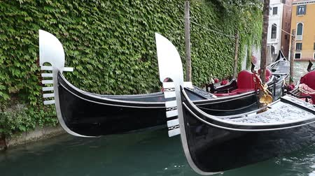 Closeup view of two gondolas moored by Grand Canal. Gondolas are bobbing on the waves. House covered with green climbing plant is in the background. (Venice, Italy)
