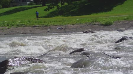 kalleş : Whitewater rapids in summer with fisherman on riverbank. Stok Video
