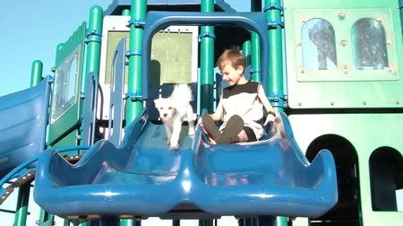 companionship : Boy and puppy go down slides together that are side by side trying to be cute, in bright angled sunlight.