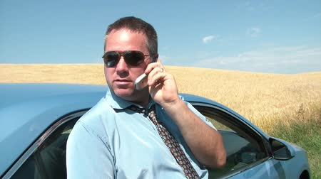 sightly : Business person on phone against newer blue car with waving wheat field in background, and bright blue sky. Stock Footage