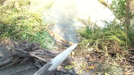 выживание : Survival clip of knife carving stick into sharp point on river bank with a pile of sticks for fire in frame.