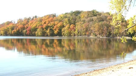 maravilhoso : Fall foliage colors reflect onto calm lake in early afternoon with beach in foreground, and sun angling onto bright trees on island from the side. Stock Footage