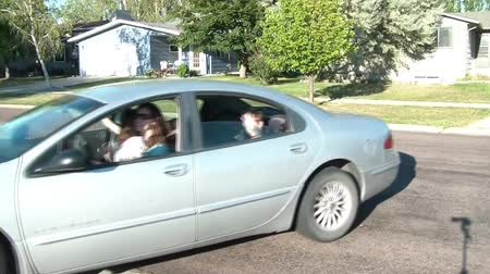 příjezdová cesta : Family reverses out of driveway in sunlight waving goodbye with windows down, white puppy on adult woman, and drives away waving again.