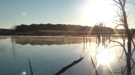 maravilha : Fog drifts over pristine lake at sunrise with dead trees yielding a dreamy atmosphere overall. Stock Footage