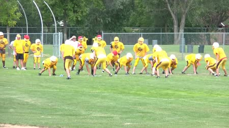 halfback : Yellow junior varsity high school football team practices in morning sunlight. Stock Footage