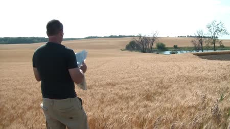 gazeta : Man standing on the edge of a wheat field reading a newspaper with scenic lake in the background. Wideo