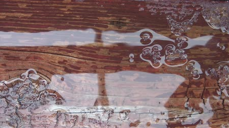 mennyiség : Abstract of water dripping onto puddle on rustic deck after brief rain shower in summer.