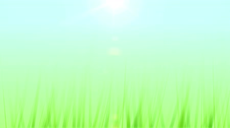 sustentável : Grass Growing Background (25fps). Artificial and stylized blades of grass growing upwards in frame against a soft blue sky background with a lens flare coming from the sun. Stock Footage