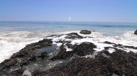 kullancs : Surfs Up Malibu. Camera pans back and forth as waves crash onto barnacle covered rocks, spewing ocean water into the air and flooding the rocks below. Stock mozgókép