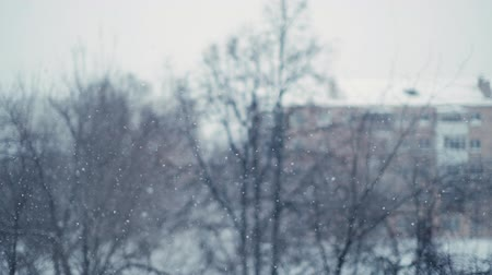 melankoli : Heavy beautiful snowfall in the city. Shooting from the window of the house with the bokeh effect in slow motion. In the background trees and cityscape. The sky is covered with thick clouds