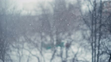 melankoli : Soothing heavy snowfall in the city. Shooting from the window of the house with the bokeh effect in slow motion. In the background trees and cityscape. The sky is covered with thick clouds