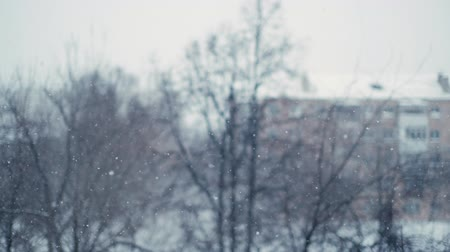 melankoli : Meditative snowfall in the city. Shooting from the apartment of the house with the bokeh effect in slow motion. In the background trees and cityscape. The sky is covered with thick clouds Stok Video