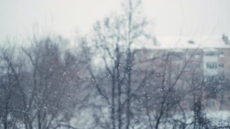 melankoli : Shooting heavy snowfall in the city in slow motion with bokeh effect on the background of trees and brick houses. Snowfall for meditation