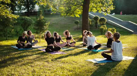 visszavonulás : Group of women tilt neck in park on summer sunny morning under guidance of coach in slow motion. Group of people outdoors is sitting in lotus pose on green grass with their eyes closed Stock mozgókép