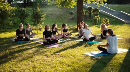antrenör : Group of women is stretching necks in park on summer sunny morning under guidance of coach in slow motion. Group of people outdoors is sitting on yoga mat in lotus pose on grass with their eyes closed Stok Video