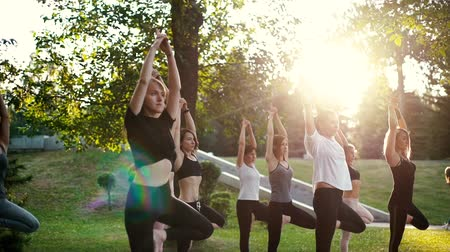 ağaç gövdesi : Group of concentrated young women are balancing on one leg with raised arm in tree pose in park while sunrise. Group of people in sportswear is standing yoga tree pose. Tracking shot in slow motion Stok Video