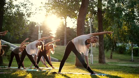 инструктор : Group of young women performs arm and torso inclinations morning in park while sunrise. Group of people outdoors are standing, stretching on yoga mats and meditating. Tracking shot in slow motion