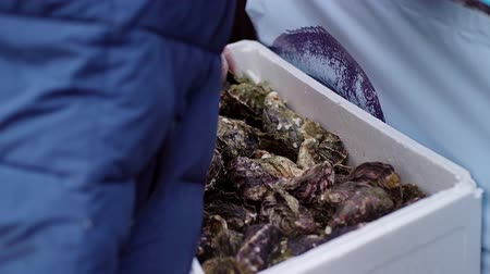 molusco : Portrait of man moving oysters out of a box. Shot in slow motion. Camera picks up a mans back