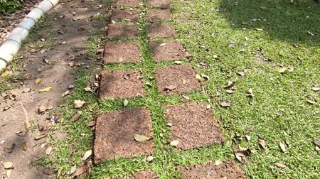 paving : Walks in the stone walkway among enjoy nature and outdoors on summer day