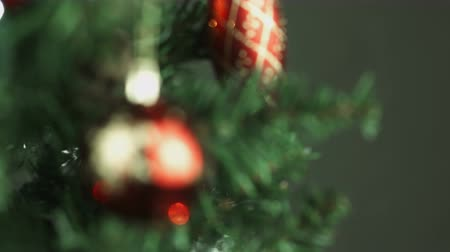 боке : christmas tree isolated on black background