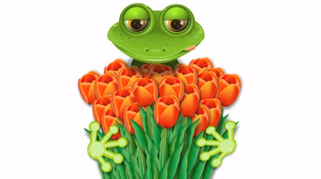žába : frog and tulips