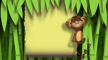bamboo forest : video, a brown monkey in the jungle