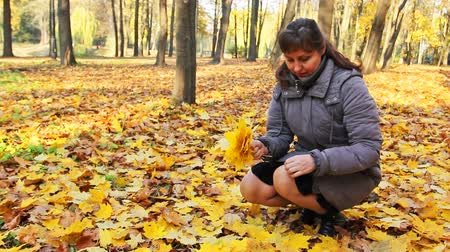 brune : nice woman sits squatted and collects yellow leaves in beautiful autumn city park